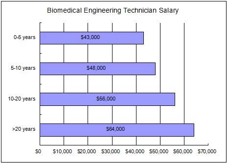 Biomedical Engineering Technician Career